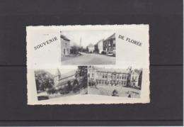 FLOREE-SOUVENIR DE-MULTVUE-EDIT.HAYOT-CARTE ENVOYEE 1959-VOYEZ LES 2 SCANS-RARE+TOP! ! ! - Assesse