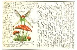 ELF MOSQUITO Atterrit Sur Amanite Tue-mouches Landing On Fly Agaric  FANTAISIE FANTASY Sent 1931 - Toxic Plants