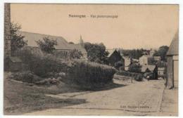 Nassogne - Vue Panoramique - Ed. Sevrin Crucifix - Nassogne