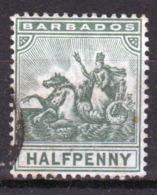 Barbados 1892 Queen Victoria Single Half Penny Stamp. - Barbados (...-1966)