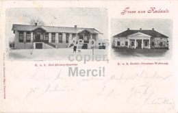 Rădăuți Radautz Gruß Aus Radautz - Bukowina - K. U. K. Pferdegestüt - 1899 - Top! - Rumänien