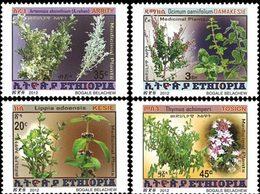 ETHIOPIE Plantes Médicinales 4v 2012 Neuf ** MNH - Ethiopie