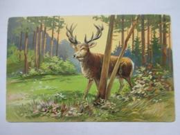 CERF  DANS LES BOIS   .....     GAUFFREE         TTB - Tierwelt & Fauna