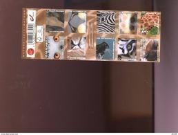 Belgie Boekje 2013 B140 ZOO ANtwerp Birds Owl Elephant Lion Pinguin Seal Tigre Zebra Okapi Giraffe Ape MNH 4340/49 - Carnets 1953-....
