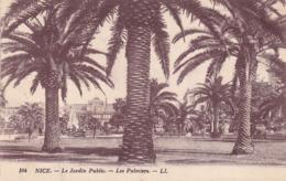 CPA - Nice Le Jardin Public - Les Palmiers - Monuments, édifices