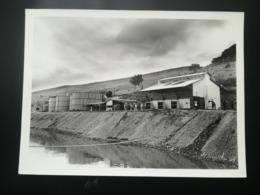 BAS - CONGO ARTÈRE VITALE  COLONIE OTRACO CHEMIN DE FER MATADI LIVRE + PHOTO  INSTALLATIONS DE Ango-Ango CONGO Belgique - Bateaux