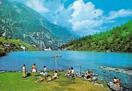 Cartolina Macugnaga Borca Lago Delle Fate Animata - Verbania