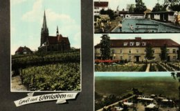 Gruss Aus Edenkoben/Pfalz  (koloriert) - Edenkoben