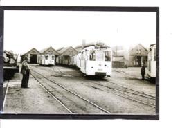 Photo Tram - Marloie - Dans Le Dépôt  (1952) - Marche-en-Famenne