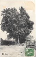 Sivry NA17: Le Calvaire 1913 - Sivry-Rance