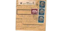 Colis Postal  / De Stein ( Steiner Alpen , Kärten  )  / Pour Waldheim  / 13-3-43 - Deutschland