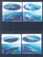 G120- Norfolk Island 2004 Sharks Fauna Marine Life. - Fishes