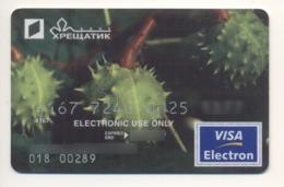Credit Card Flora Chestnut Tree Bankcard Khreshchatyk Bank UKRAINE VISA Expired 09.2009 (more Than 10 Years) - Cartes De Crédit (expiration Min. 10 Ans)
