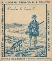 CHASSE - Chercher Le Lapin - La Maison A. Charlemagne à Beauvais - Hunting
