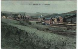 Baconfoy - Panorama ... De La Station Du Vicinal - Ed. Duparque N°10 - Colorisée - Tenneville