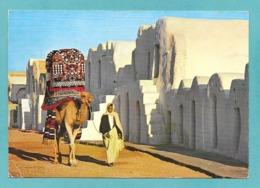 TUNISIE KSAR DEBBAB - Tunisia