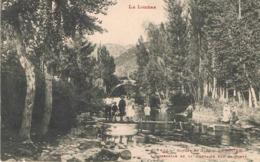 LE ROZIER (Lozère) - Passerelle De La Fontaine Sur La Jonte - Gorges Du Tarn - Animée - Francia