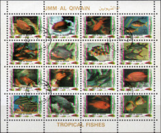 VARIETA UMM AL QIWAIN 1972 - PESCI TROPICALI - COLORI FUORI REGISTRO + 2 FORI CIECHI - FOGLIETTO NUOVO CTO - Umm Al-Qaiwain