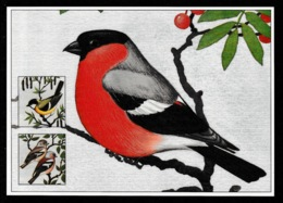 FINLAND 1991 Birds: Postcard UNUSED - Cartas