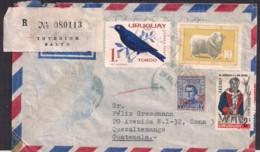 Uruguay - 1967 - Lettre - Timbre Diverse - Oiseaux Tordo - Uruguay