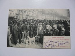 CPA 31 HAUTE GARONNE - TOULOUSE : Types Toulousains - Le Marché Aux Chiens - Toulouse