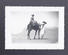 PHOTO 1926 MADELEINE AU DUNES DU SAHARA  A BISKRA  ALGERIE - Biskra