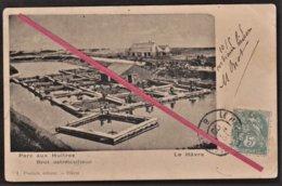 76 LE HAVRE -- Parc Aux Huitres _ Brot. Ostréiculteur _ 10 Mai 1905 _ Sainte-Adresse Ou Quartier Sud ? _ Métier - Le Havre