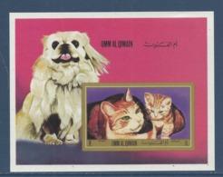 Umm Al Qiwain - Bloc - Chien Et Chat - Neuf Sans Charnière - 1971 - Umm Al-Qaiwain