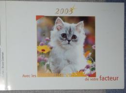 Petit Calendrier De Poche 2003 La Poste PTT Meilleurs Voeux Facteur  Chat Chaton - Petit Format : 2001-...