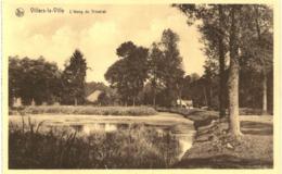 VILLERS LA VILLE   L' étang Du Tricotiat. - Villers-la-Ville
