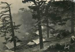 20 - Bavella - Col De Bavella - Maisons De Bergers - Voir Timbre Marianne De Gandon - Etat Trou De Punaise Visible - Voi - Francia