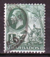 Barbados 1912 George V Single One Half Penny Stamp From The Definitive Set. - Barbados (...-1966)