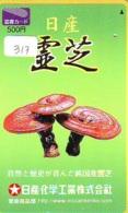 MUSHROOM CHAMPIGNON SETA Fungo Paddestoel (317) - Fiori