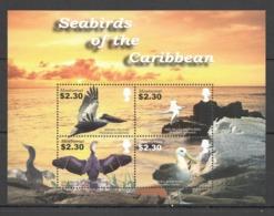 Y803 MONTSERRAT BIRDS SEABIRDS OF THE CARIBBEAN FAUNA 1KB MNH - Marine Web-footed Birds