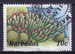 Barbados Single 10c Stamp From The 1985 Marine Life Series. - Barbados (1966-...)