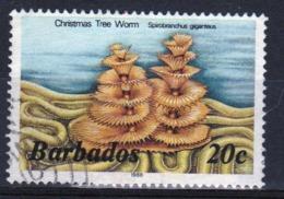 Barbados Single 20c Stamp From The 1985 Marine Life Series. - Barbados (1966-...)