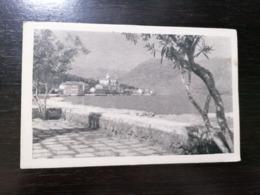 PRCANJ MONTENEGRO - PLAZA - TRAVELLED 1953 - Montenegro