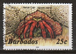 Barbados Single 25c Stamp From The 1985 Marine Life Series. - Barbados (1966-...)