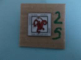 "PIN'S - MONS - "" Team Couleut Café - Ri Gam Academy - Taekwondo - Mons ""- Voir Photo ( 25 ) - Villes"