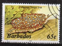 Barbados Single 65c Stamp From The 1985 Marine Life Series. - Barbados (1966-...)