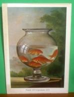 PESCI ROSSI Dipinto Giuseppe Tominz Galleria Nazionale Lubiana  CARTOLINA Non  Viaggiata Edizioni Rusconi - Fish & Shellfish