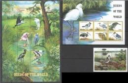 W623 TANZANIA FAUNA BIRDS OF THE WORLD 2KB+1BL MNH - Other