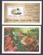 T1164 SIERRA LEONE CATS OF THE WORLD FAUNA DOMESTIC ANIMALS PETS 2BL MNH - Domestic Cats