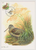 Maxikaart Buzin - Cob N° 3898 - Houtsnip - Bécasse Des Bois-  1ste Dagstempel - 1985-.. Vogels (Buzin)