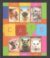 Y853 GUYANA FAUNA PETS CATS 1KB MNH - Domestic Cats