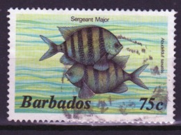 Barbados Single 75c Stamp From The 1985 Marine Life Series. - Barbados (1966-...)