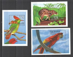 Y870 GUYANA FLORA & FAUNA WILD ANIMALS ART BIRDS PARROTS 3BL MNH - Stamps