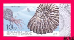 ABKHAZIA 2019 Fauna Marine Shell Fossils Extinct Cephalopods Ammonites Archaeology 1v Imperforated MNH - Fossils