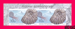 ABKHAZIA 2019 Fauna Marine Shell Fossils Extinct Cephalopods Ammonites Archaeology Imperforated Pair MNH - Fossils