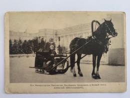 Tsarevich Alexei Nikolaevich 1913 - Rusia